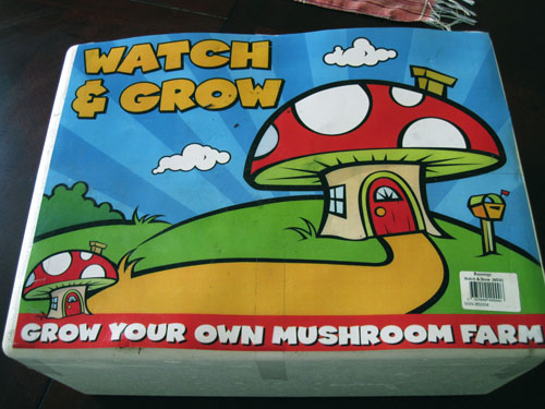 Mushroom kit: grow your own