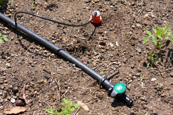 The water spike in place, attached to our 19mm polypipe network.