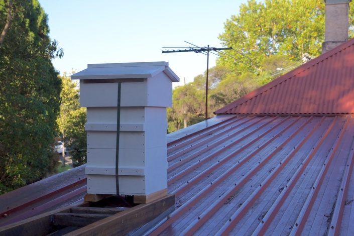 Our new Warré hive, in place on the roof, just waiting for some bees!