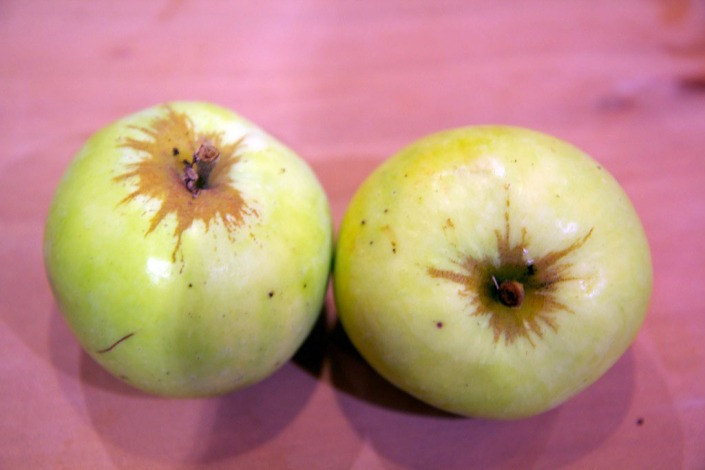 Our first apples, Granny Smith I think