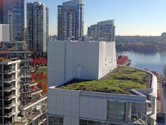 A green roof on top of a skyscraper, as seen from the Granville bridge