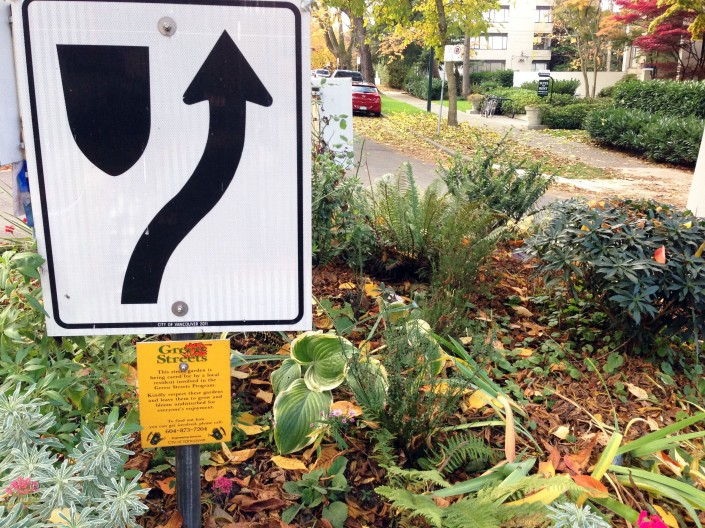 "Greening a roundabout: ""This street garden is being cared for by a local resident involved in the Green Streets Program."""