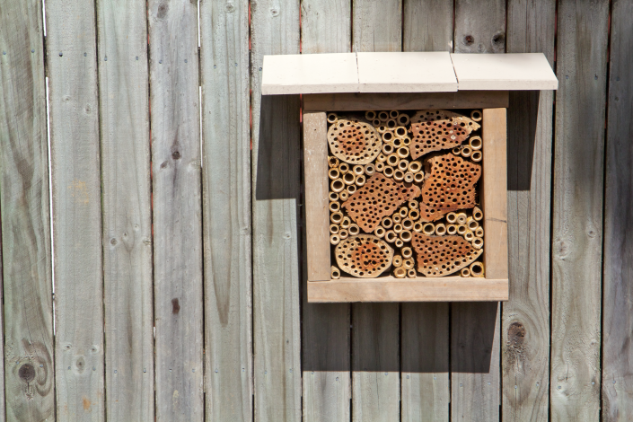 Our new insect hotel, in place on the fence