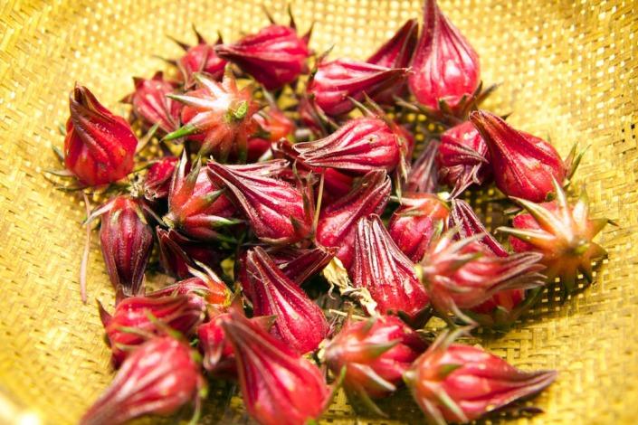 A basket full of rosella calyx.