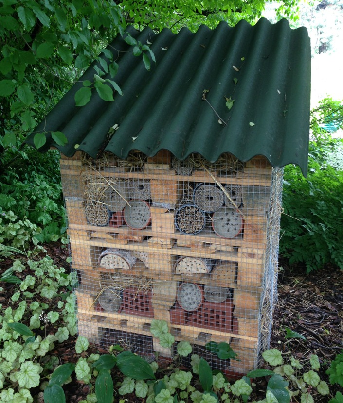 Insect hotel in Warsaw