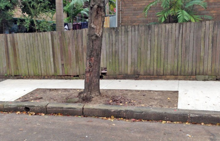 Marrickville council biodiversity strategy