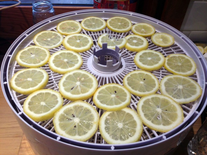 Sliced lemon, for use in months to come.