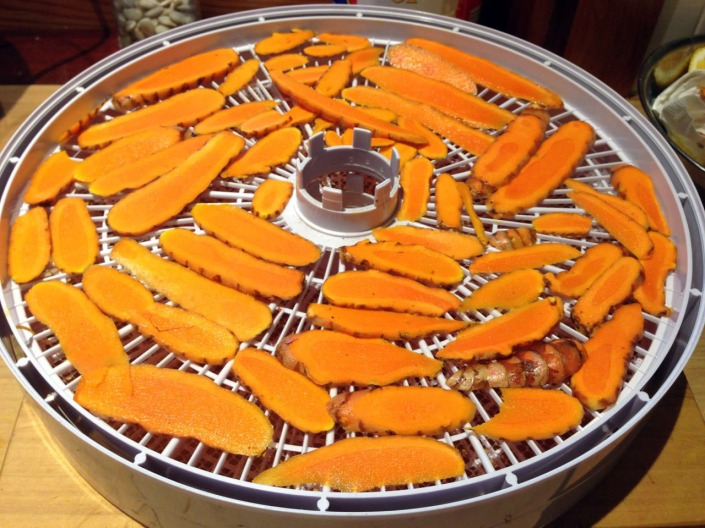 Tumeric, sliced and ready for dehydration.