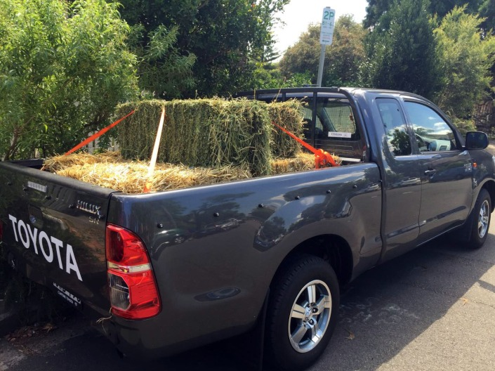 Six bales of straw, plus two bales of lucern hay (for good mesure)