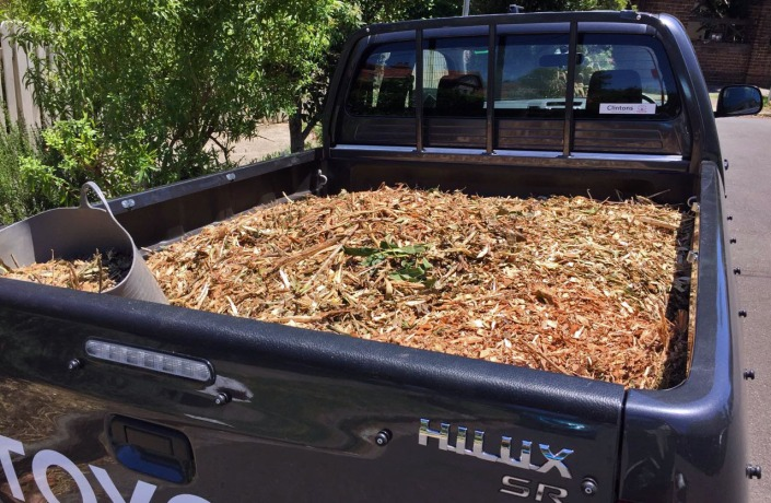 It's handy having a ute when it comes to collecting mulch!