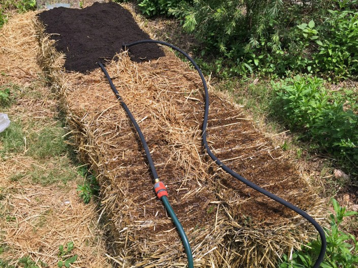 A soaker hose laid across the straw bales, with the start of a layer of planting mix.