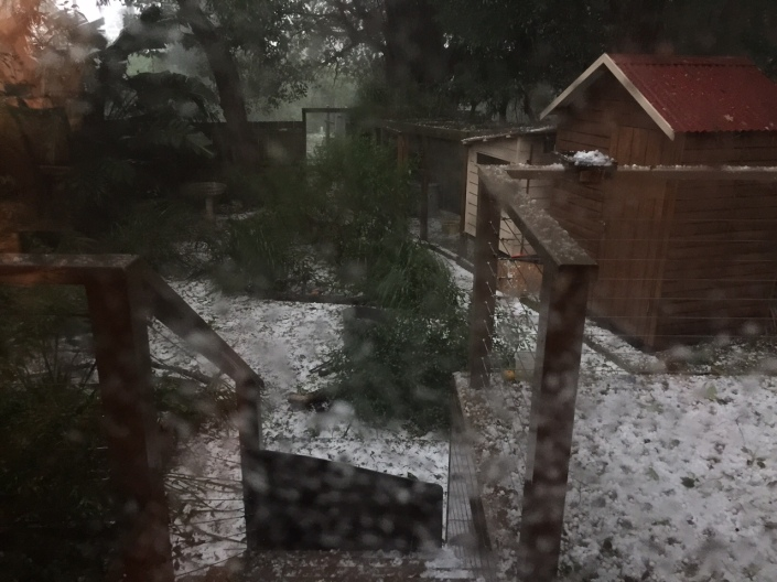 That's a serious amount of hail, now blanketing our back yard and still coming