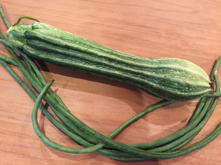 """Costa Romasesque"" zucchini, along with snake beans"