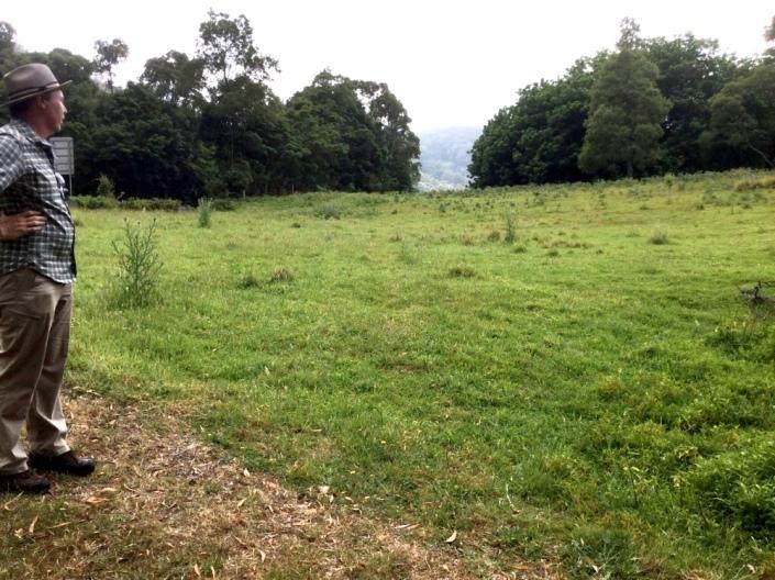 house-field